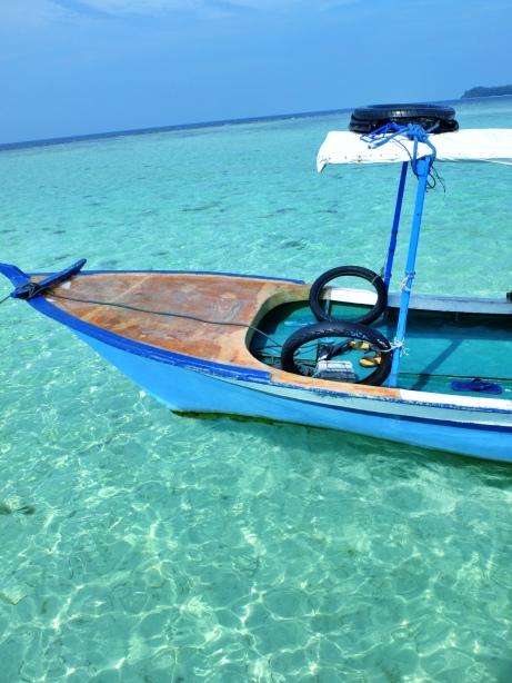 Snorkeling di Antara salah satu koral.