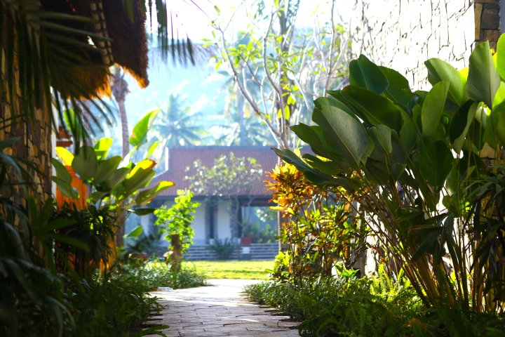 3. Garden Area