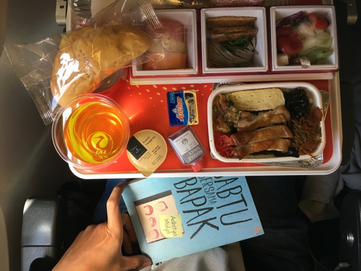 japan airlines review